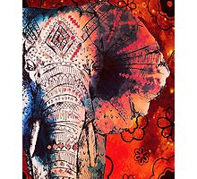 Sketched Elephant Photographic Print