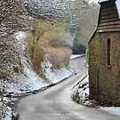 Narrow Country Lane by relayer51