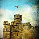 Lincoln Castle, Lincoln, UK  by buttonpresser