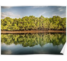 Rinca Island Reflections Poster