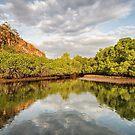 Rinca Island by Mieke Boynton