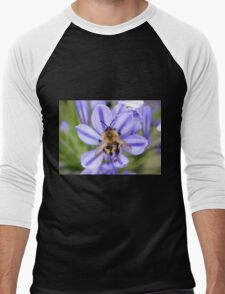 Bumble Bee on Allium Men's Baseball ¾ T-Shirt
