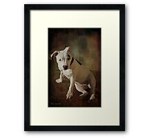 Hello, I am Ruby Framed Print