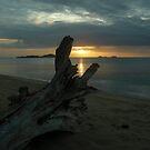 Loyalty Beach by V1mage