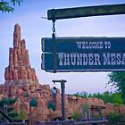 Thunder Mesa (Frontierland) by ThatDisneyLover