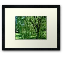 Under the Old Willow Tree- collaboration      ^ Framed Print