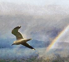 Seagull &  rainbow, Romsdalsfjord , Norway by buttonpresser