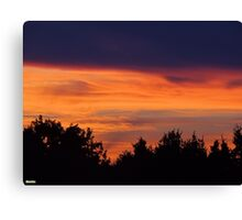 Coucher de soleil sur la forêt Canvas Print