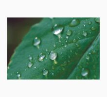 water droplets on a leaf in spring  Baby Tee