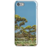 Goldfields Gimlets iPhone Case/Skin