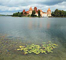 Castle of Trakai - Lithuania by Arie Koene