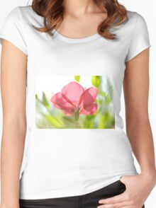 back lit, Red garden flower from the poppy family  Women's Fitted Scoop T-Shirt