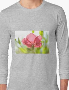 back lit, Red garden flower from the poppy family  Long Sleeve T-Shirt
