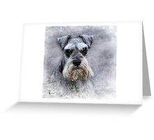 Serious Schnauzer Greeting Card