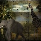 Out of Africa... by MarieG