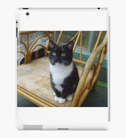 Socks the kitten II iPad Case/Skin