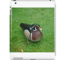 Wood duck iPad Case/Skin