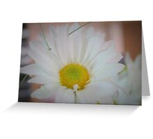Dreamy Daisy Greeting Card