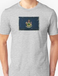 Maine State Flag VINTAGE T-Shirt