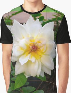 English Rose Graphic T-Shirt
