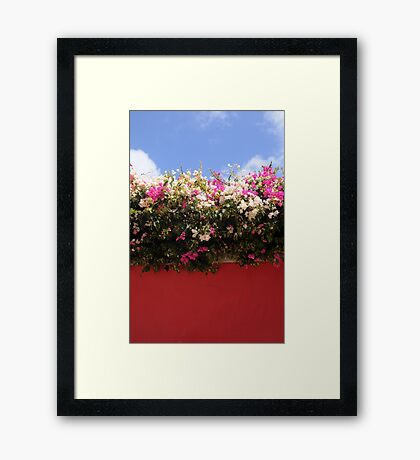 Wall with flowers Framed Print