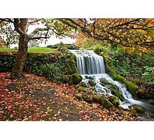 Littlebredy waterfall Photographic Print