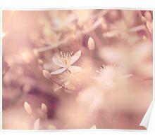 Nature Blushing Poster