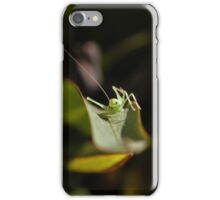 Baby Bug iPhone Case/Skin