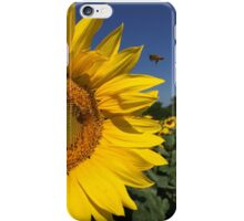 Sunflower and Bees iPhone Case/Skin