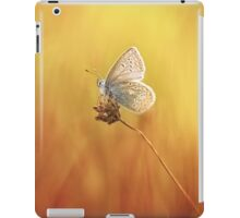 Catching a little sunshine... iPad Case/Skin