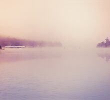 Nature Dreamscape Foggy Morning by alyphoto
