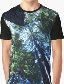 Redwoods from Below Graphic T-Shirt