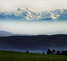 Blue Mountains Switzerland by Angelika  Vogel