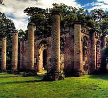 Old Sheldon Church Ruins - Analog HDR by Bill Wetmore