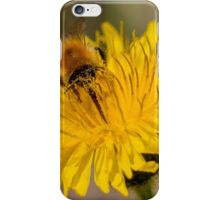 Carder Bee iPhone Case/Skin