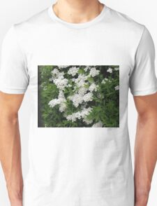 Pretty White Spirea Blossoms Unisex T-Shirt
