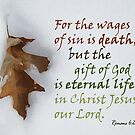 Gift of God ~ Romans 6:23 by Robin Clifton