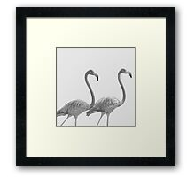 Pink Flamingoes in Black and White Framed Print