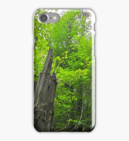 Tree Stump iPhone Case/Skin