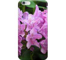 Springtime.. iPhone Case/Skin
