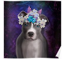 Pitbull puppy power Poster