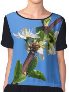 Blossom and Blue Skies Chiffon Top
