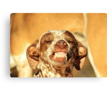 Smiling Dog - Funny Life and Honest Joy  Canvas Print