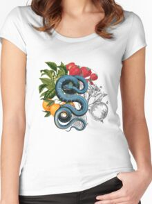 Antique Snake & Fruit Collage  Women's Fitted Scoop T-Shirt
