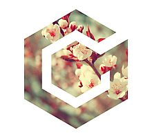 Gamecube Floral Photographic Print