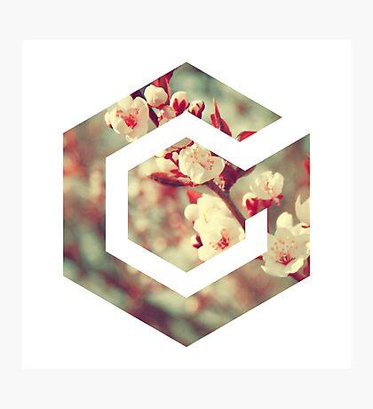 Gamecube Floral Photographic Print