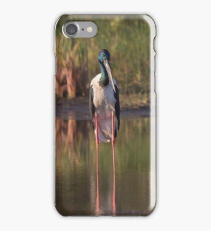 On Stilts iPhone Case/Skin