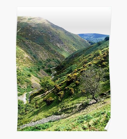 The Long Mynd Poster