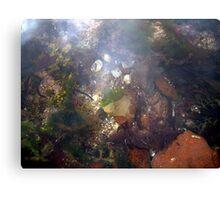 Rock Pool Canvas Print
