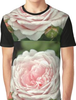 Pink Rachis Rose Graphic T-Shirt